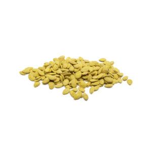 Egyptian Seeds