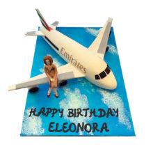 Aircraft Cake